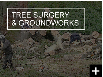 Tree Surgery and Groundworks Glasgow